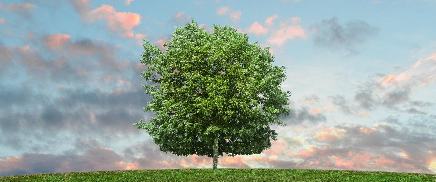 Green Concept Eco Environmentally Aware Home Improvement Blog